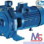 pentax CBT800