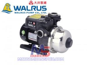 may bom walrus